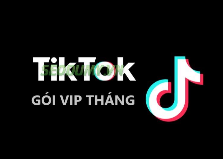 Gói VIP Tháng