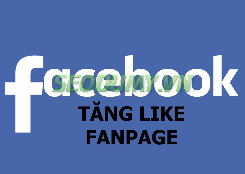 Tăng Like Fanpage (20đ)